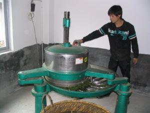 Tørring af urter til te