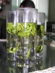 Teblade brygges direkte i glasset